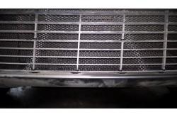 Защитная сетка в бампер Toyota Verso с установкой