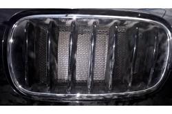 Сетка в бампер BMW X6 с установкой
