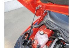 Амортизатор капота Ford EcoSport